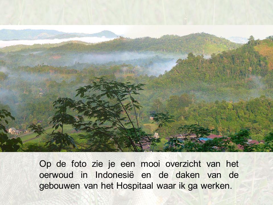 Op de foto zie je een mooi overzicht van het oerwoud in Indonesië en de daken van de gebouwen van het Hospitaal waar ik ga werken.