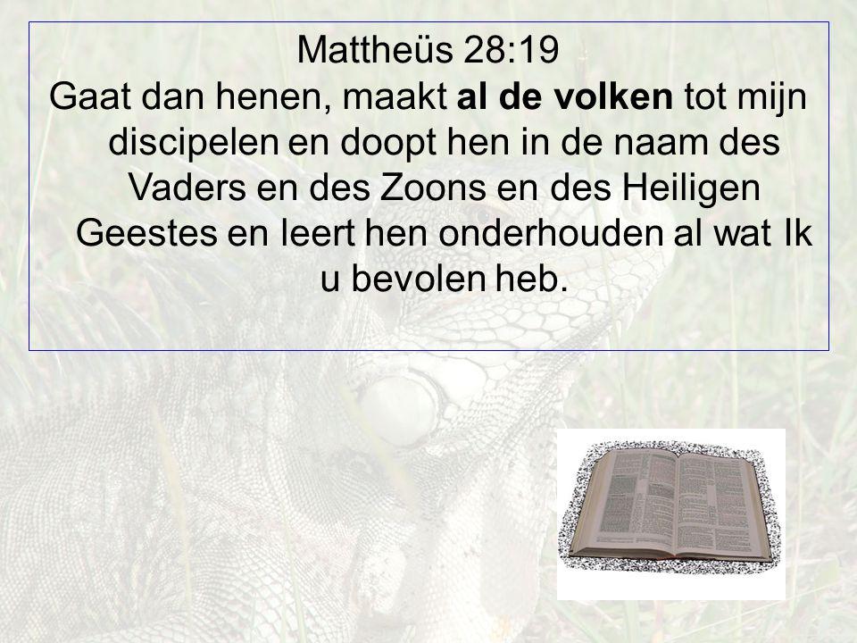 Mattheüs 28:19 Gaat dan henen, maakt al de volken tot mijn discipelen en doopt hen in de naam des Vaders en des Zoons en des Heiligen Geestes en leert hen onderhouden al wat Ik u bevolen heb.