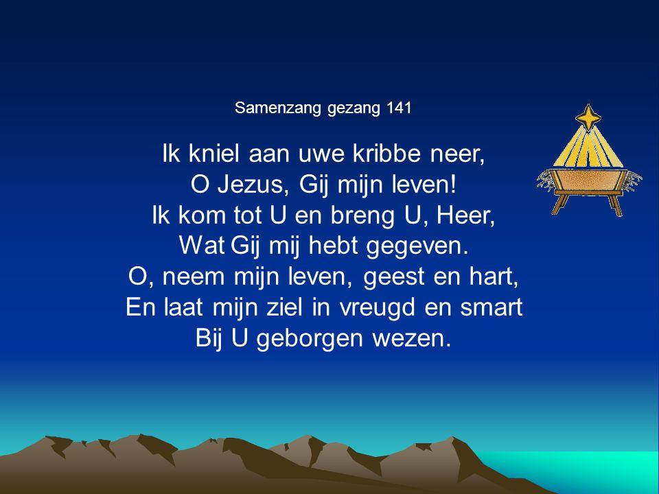 Samenzang gezang 141 Ik kniel aan uwe kribbe neer, O Jezus, Gij mijn leven! Ik kom tot U en breng U, Heer, Wat Gij mij hebt gegeven. O, neem mijn leve