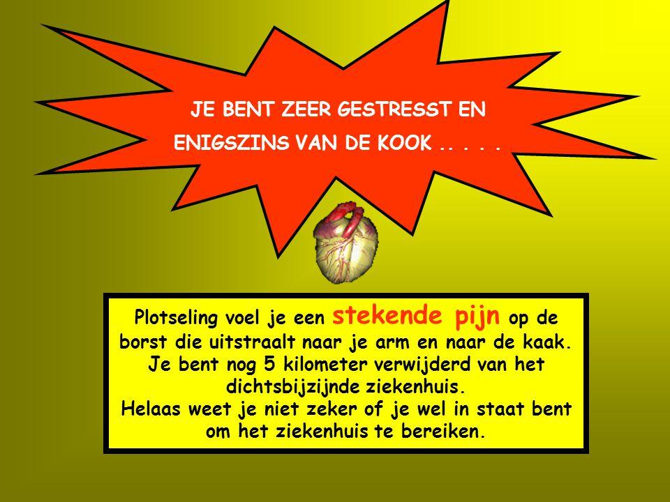 JE BENT ZEER GESTRESST EN ENIGSZINS VAN DE KOOK.....
