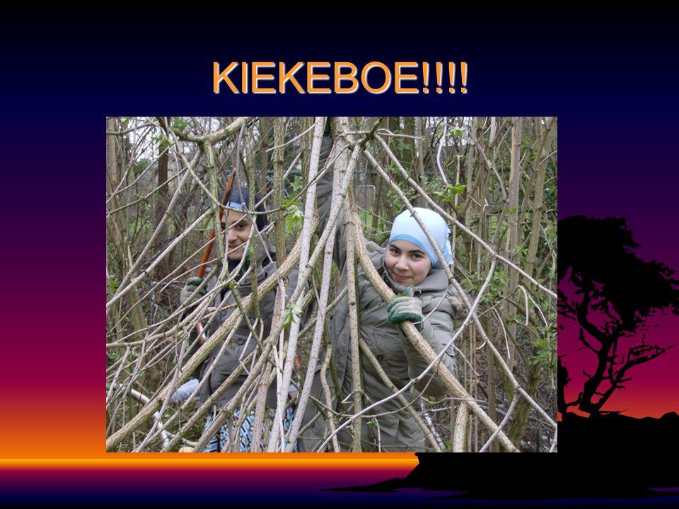 KIEKEBOE!!!!
