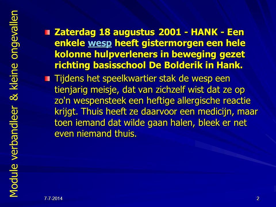 Module verbandleer & kleine ongevallen 7-7-20142 Zaterdag 18 augustus 2001 - HANK - Een enkele wesp heeft gistermorgen een hele kolonne hulpverleners