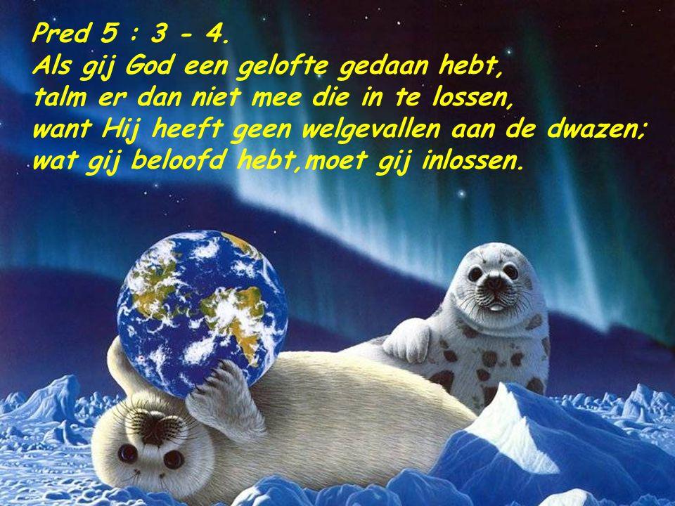 Pred 4 : 17. Behoed uw voet, als gij naar Gods huis gaat; immers, naderen om te Horen is beter dan het offeren der dwazen, want die weten niet, dat zi