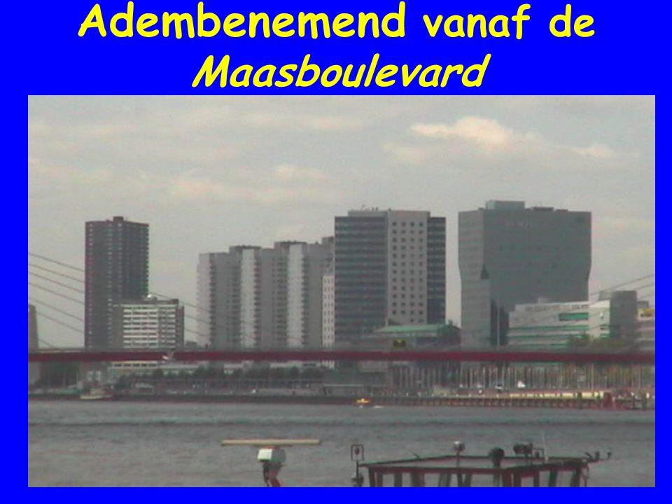 Adembenemend vanaf de Maasboulevard