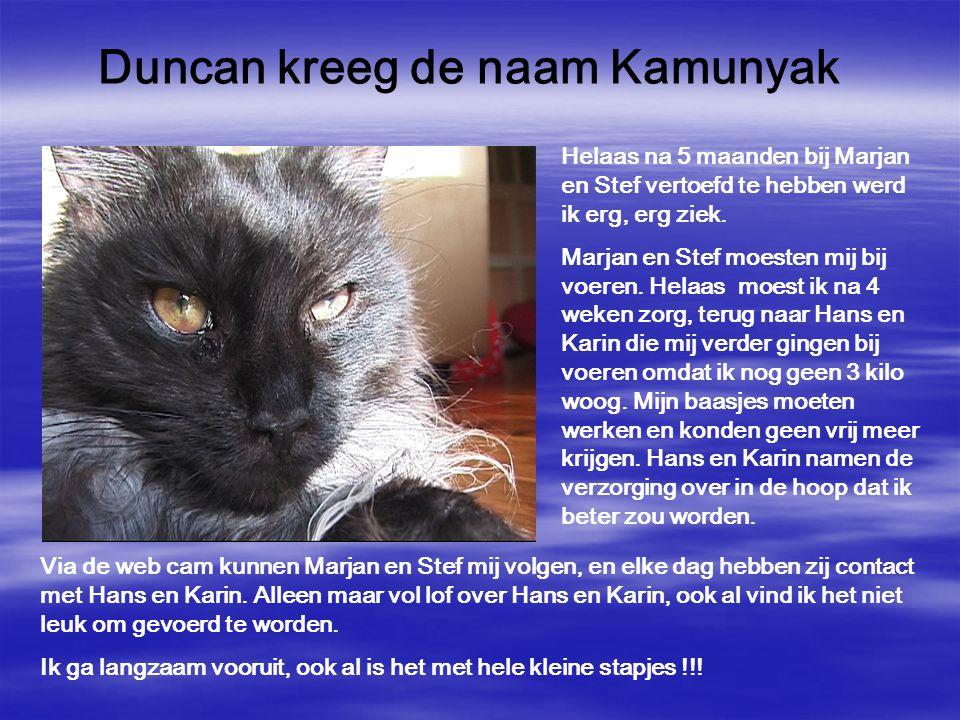 Duncan kreeg de naam Kamunyak Helaas na 5 maanden bij Marjan en Stef vertoefd te hebben werd ik erg, erg ziek. Marjan en Stef moesten mij bij voeren.