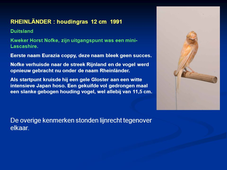 Gloster corona 1935 Fiorino 1980 Noord Hollander 1880