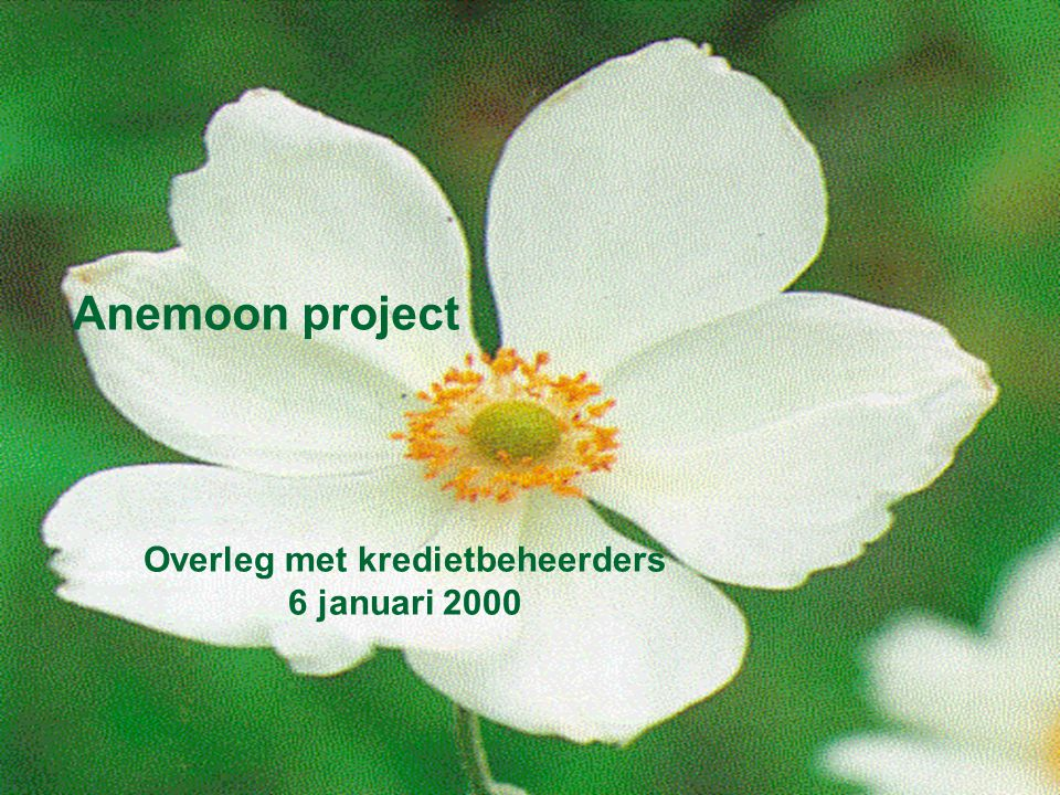 Anemoon project Overleg met kredietbeheerders 6 januari 2000