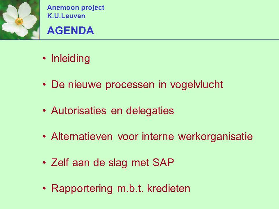 Anemoon project K.U.Leuven detail volgens rubrieken