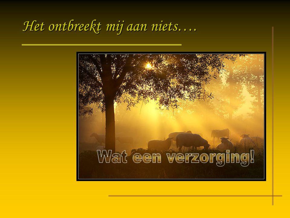 De Heer is mijn Herder,