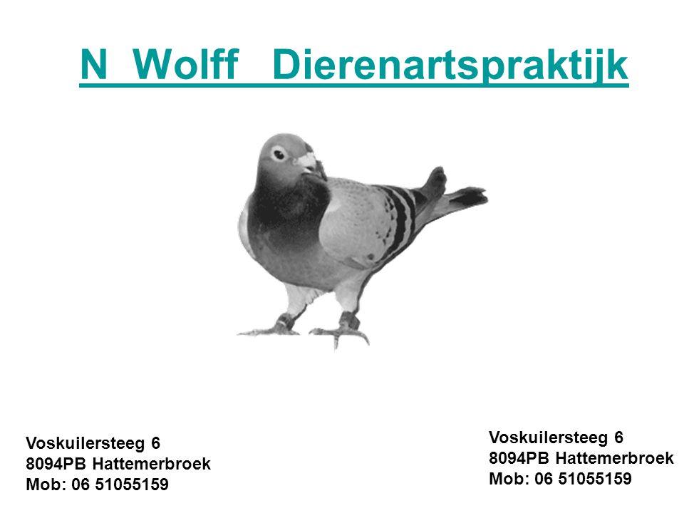 N Wolff Dierenartspraktijk Voskuilersteeg 6 8094PB Hattemerbroek Mob: 06 51055159 Voskuilersteeg 6 8094PB Hattemerbroek Mob: 06 51055159