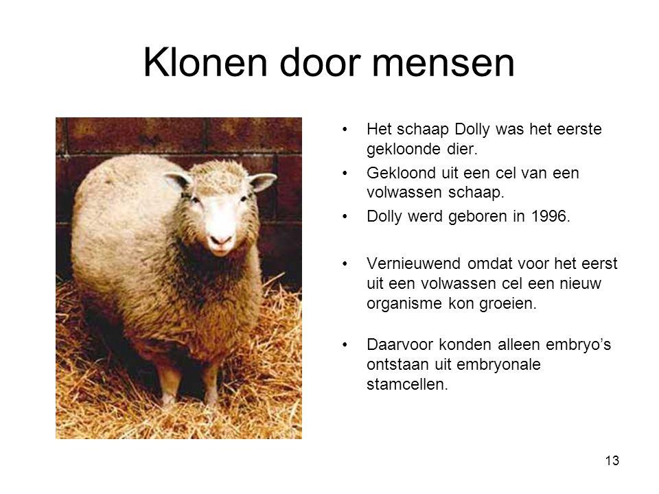 13 Klonen door mensen Het schaap Dolly was het eerste gekloonde dier. Gekloond uit een cel van een volwassen schaap. Dolly werd geboren in 1996. Verni