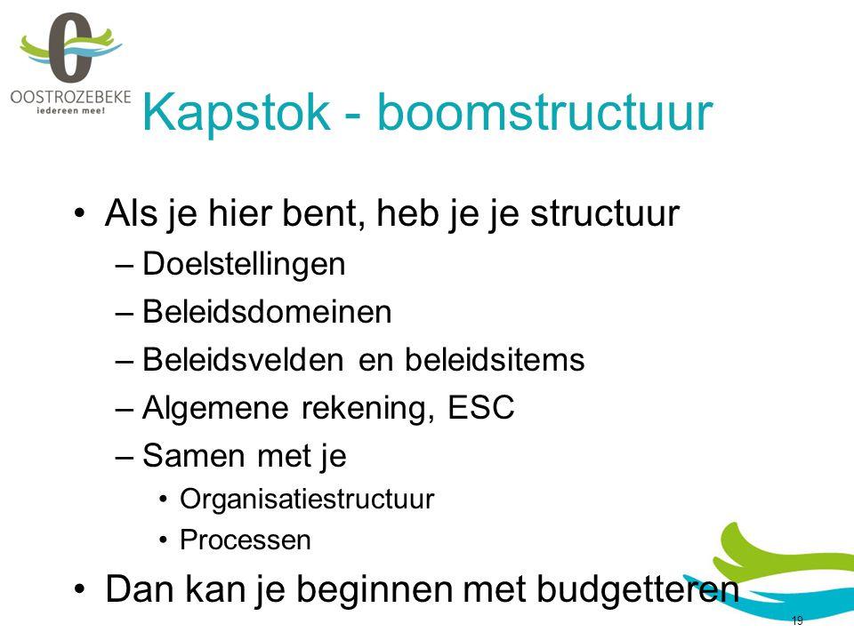 Kapstok - boomstructuur Als je hier bent, heb je je structuur –Doelstellingen –Beleidsdomeinen –Beleidsvelden en beleidsitems –Algemene rekening, ESC –Samen met je Organisatiestructuur Processen Dan kan je beginnen met budgetteren 19