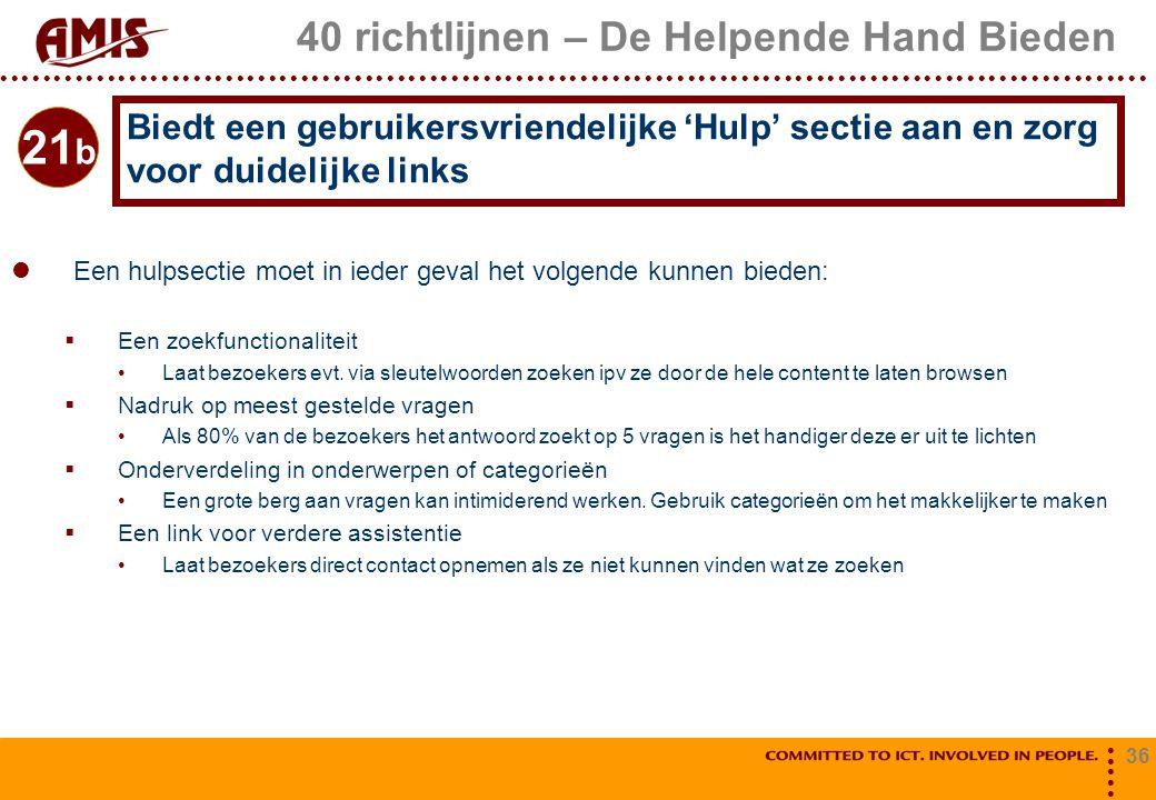 36 40 richtlijnen – De Helpende Hand Bieden Een hulpsectie moet in ieder geval het volgende kunnen bieden:  Een zoekfunctionaliteit Laat bezoekers ev