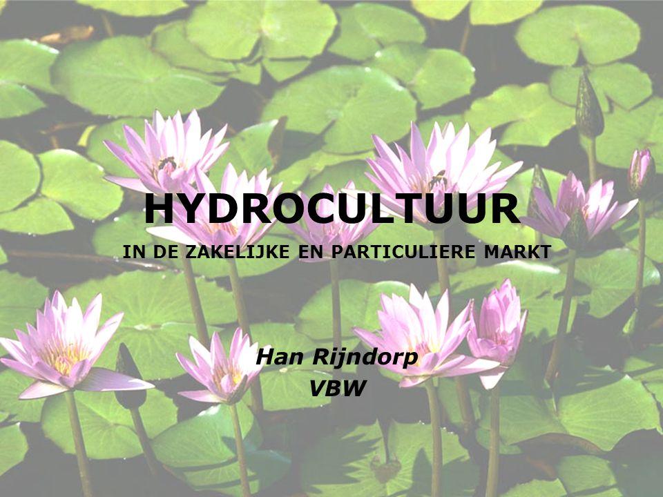 HYDROCULTUUR IN DE ZAKELIJKE EN PARTICULIERE MARKT Han Rijndorp VBW