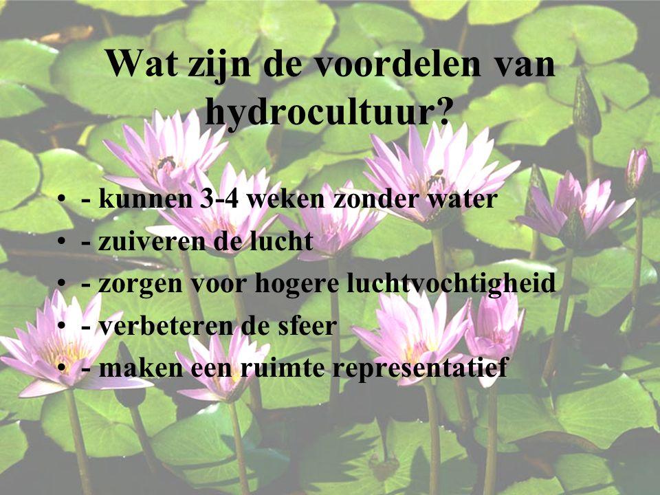 Wat zijn de voordelen van hydrocultuur.