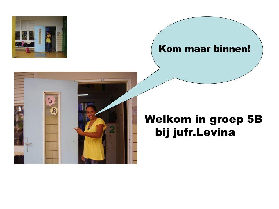 Welkom in groep 5B bij jufr.Levina Kom maar binnen!