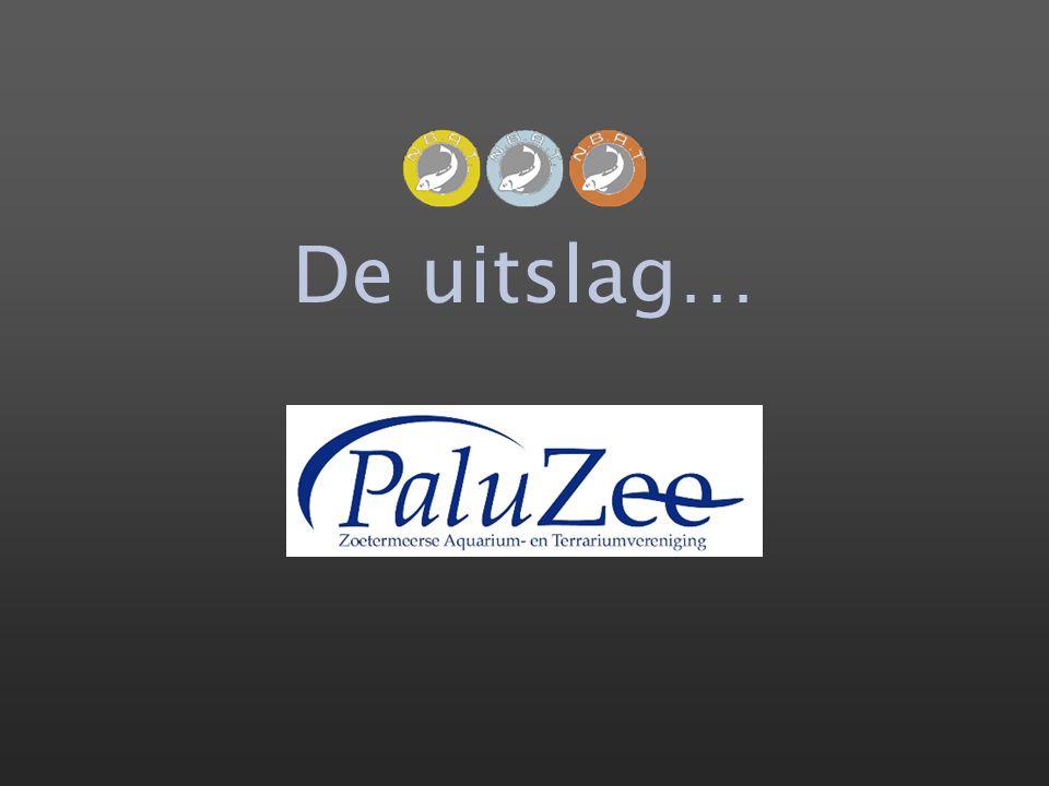 Bart Laurens Paluzee 392,0 / 62,5