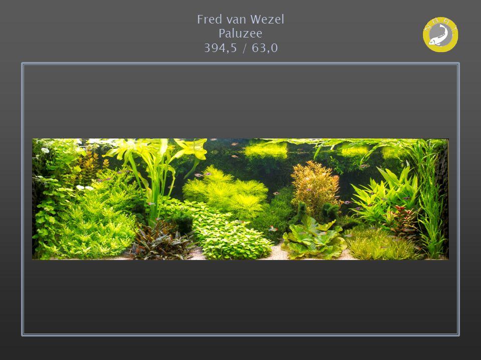 Fred van Wezel Paluzee 394,5 / 63,0
