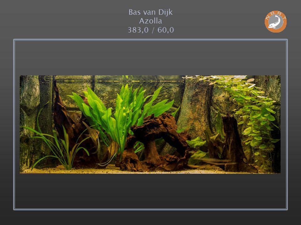 Bas van Dijk Azolla 383,0 / 60,0