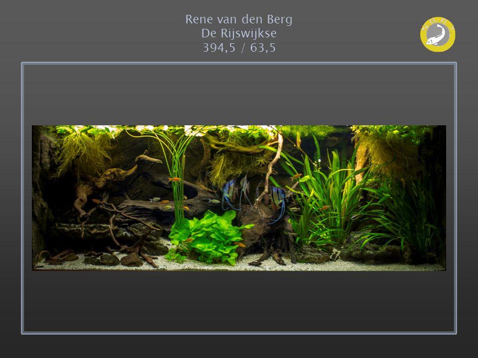 Rene van den Berg De Rijswijkse 394,5 / 63,5