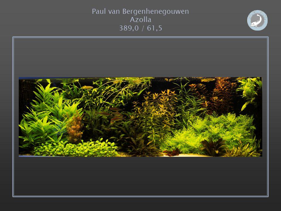 Paul van Bergenhenegouwen Azolla 389,0 / 61,5
