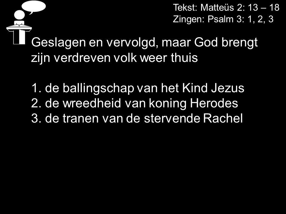 Tekst: Matteüs 2: 13 – 18 Zingen: Psalm 3: 1, 2, 3 Geslagen en vervolgd, maar God brengt zijn verdreven volk weer thuis 1. de ballingschap van het Kin