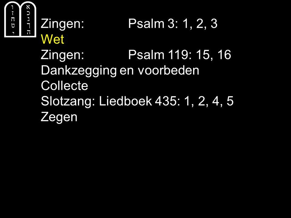 Zingen: Psalm 3: 1, 2, 3 Wet Zingen: Psalm 119: 15, 16 Dankzegging en voorbeden Collecte Slotzang: Liedboek 435: 1, 2, 4, 5 Zegen