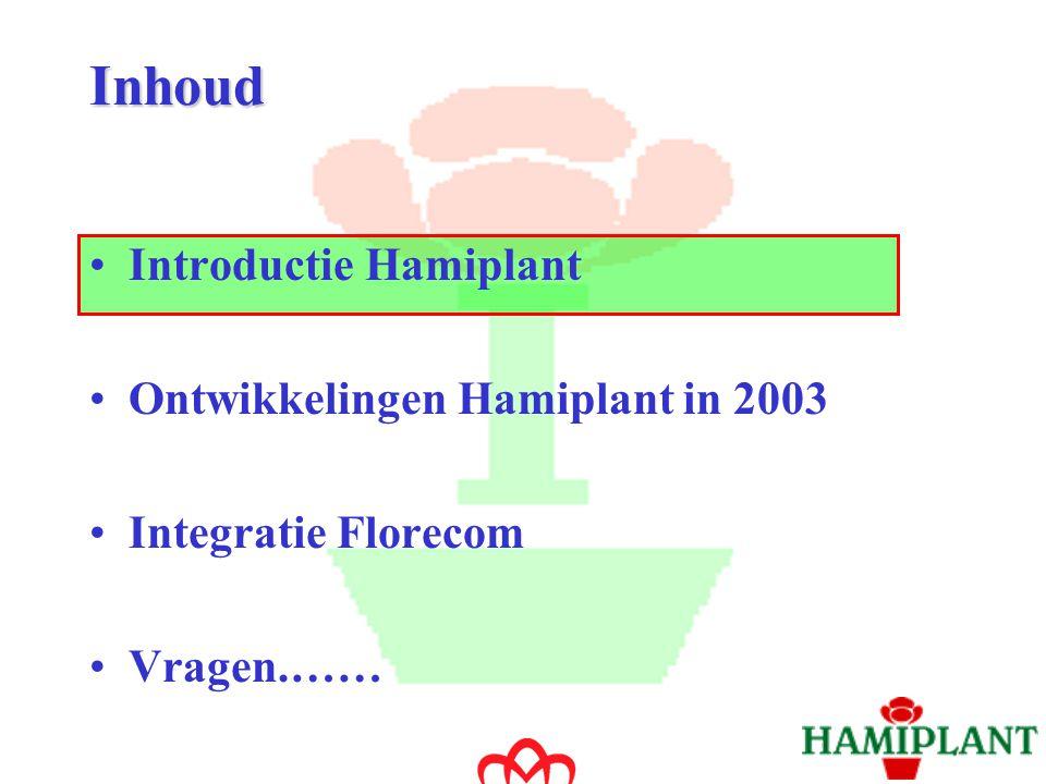Introductie Hamiplant Opgericht in 1986 door Ard Wubben Inkoop alle veilingen Klanten verdeeld over drie segmenten: - groothandel - tuincentra - supermarkten Geografische spreiding:Europa