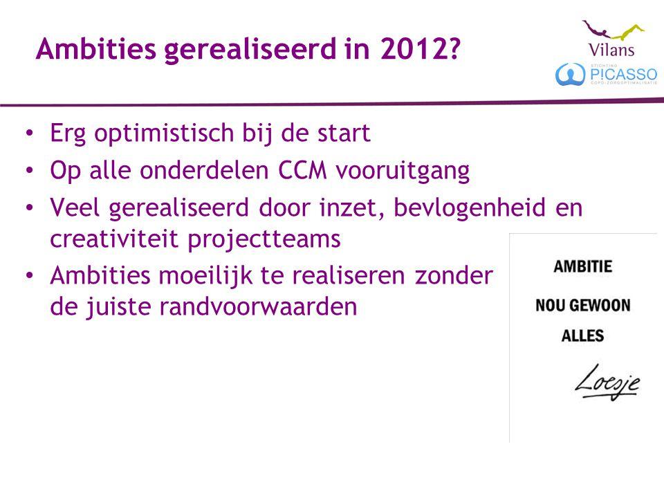 Ambities gerealiseerd in 2012? Erg optimistisch bij de start Op alle onderdelen CCM vooruitgang Veel gerealiseerd door inzet, bevlogenheid en creativi