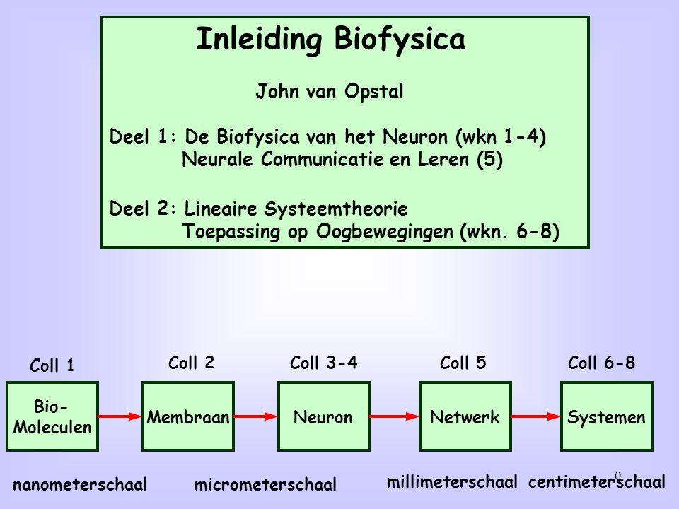 31 Meting aan neurale circuits met micro-electroden: Individuele membraanpotentialen