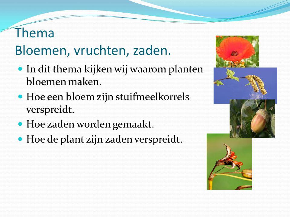 Thema Bloemen, vruchten, zaden. In dit thema kijken wij waarom planten bloemen maken. Hoe een bloem zijn stuifmeelkorrels verspreidt. Hoe zaden worden