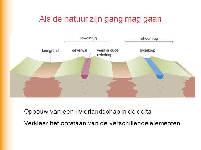 Als de natuur zijn gang mag gaan Opbouw van een rivierlandschap in de delta Verklaar het ontstaan van de verschillende elementen.