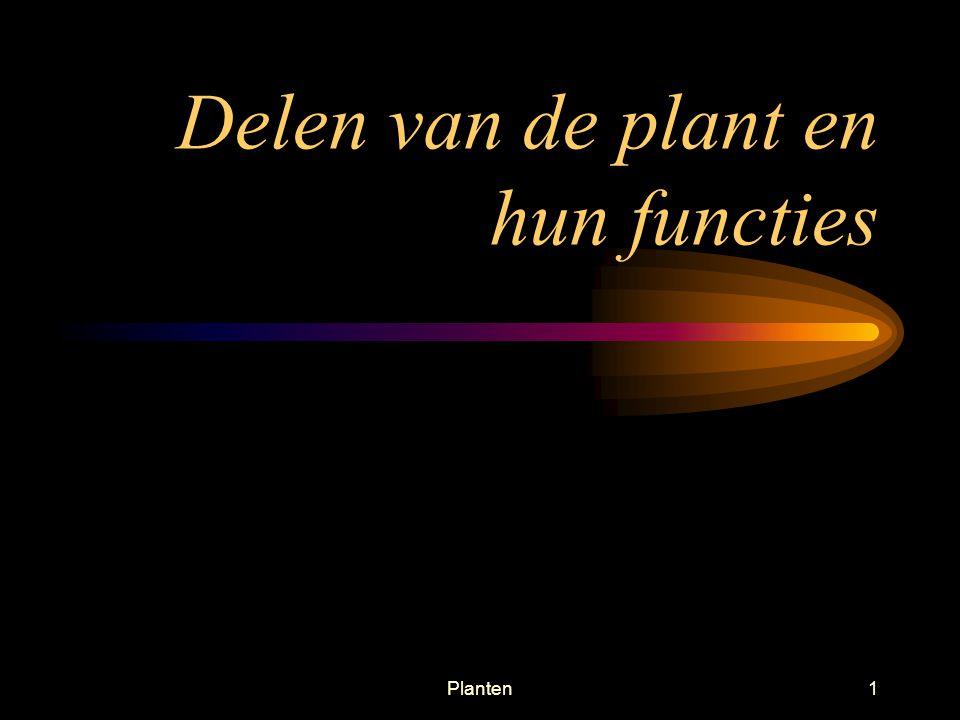 Planten1 Delen van de plant en hun functies