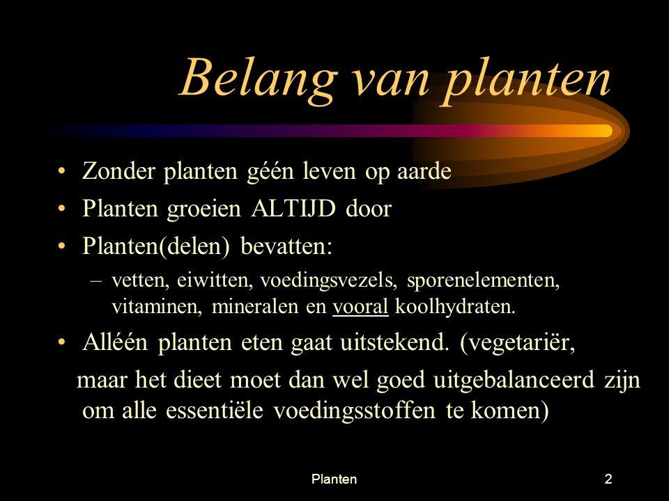 Planten72 Werking houtvaten Verdamping gaat vanzelf! Transport is passief, kost plant geen ATP!