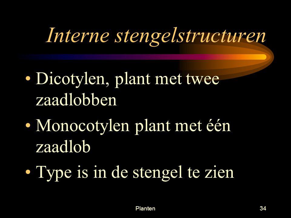 Planten33 Interne Stengelstructuren Bastvaten (floeëm), vervoert gevormd voedsel (FS) naar Beneden Houtvaten (xyleem), vervoert water en mineralen omH
