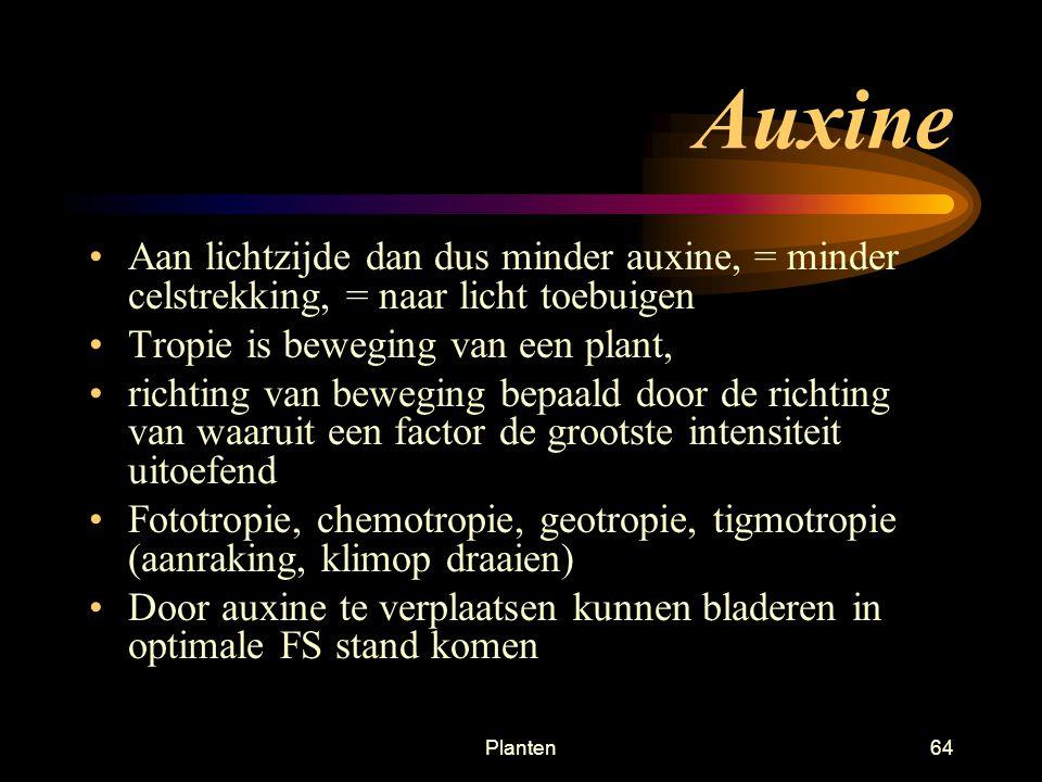 Planten63 Auxine Plantenhormoon, komt bij alle plantencellen Veroorzaakt celstrekking Auxine heeft optimum concentratie ENEr boven EN er onder is de c