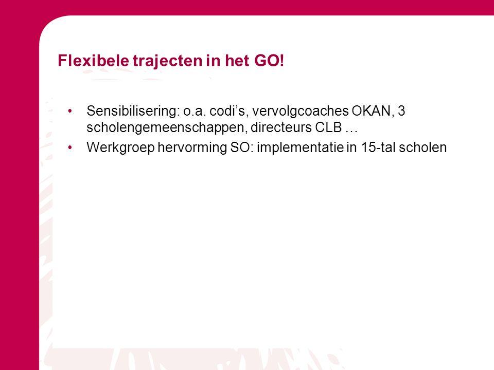 Flexibele trajecten in het GO! Sensibilisering: o.a. codi's, vervolgcoaches OKAN, 3 scholengemeenschappen, directeurs CLB … Werkgroep hervorming SO: i