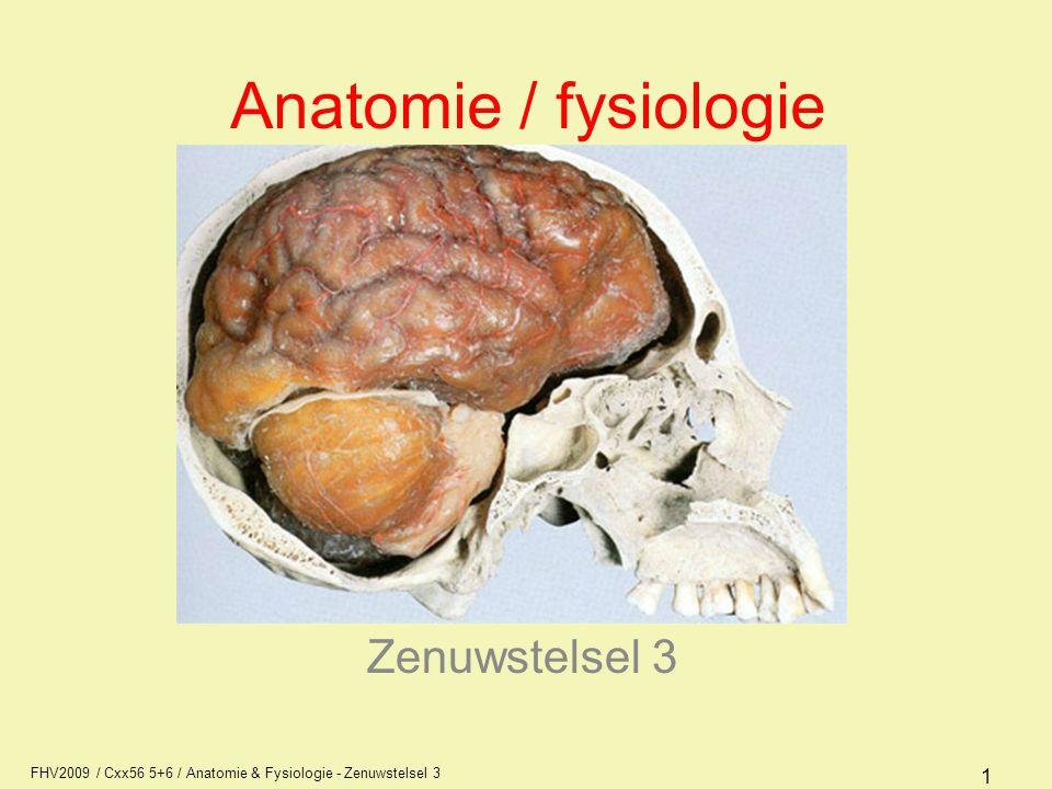 FHV2009 / Cxx56 5+6 / Anatomie & Fysiologie - Zenuwstelsel 3 32 Diëncephalon (tussenhersenen) De tussenhersenen liggen in holtes van de grote hersenen –thalamus –hypothalamus –epithalamus
