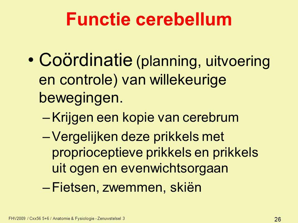 FHV2009 / Cxx56 5+6 / Anatomie & Fysiologie - Zenuwstelsel 3 26 Functie cerebellum Coördinatie (planning, uitvoering en controle) van willekeurige bew