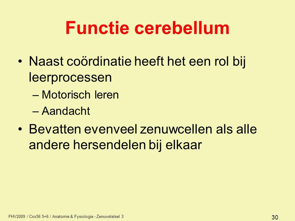 FHV2009 / Cxx56 5+6 / Anatomie & Fysiologie - Zenuwstelsel 3 30 Functie cerebellum Naast coördinatie heeft het een rol bij leerprocessen –Motorisch le
