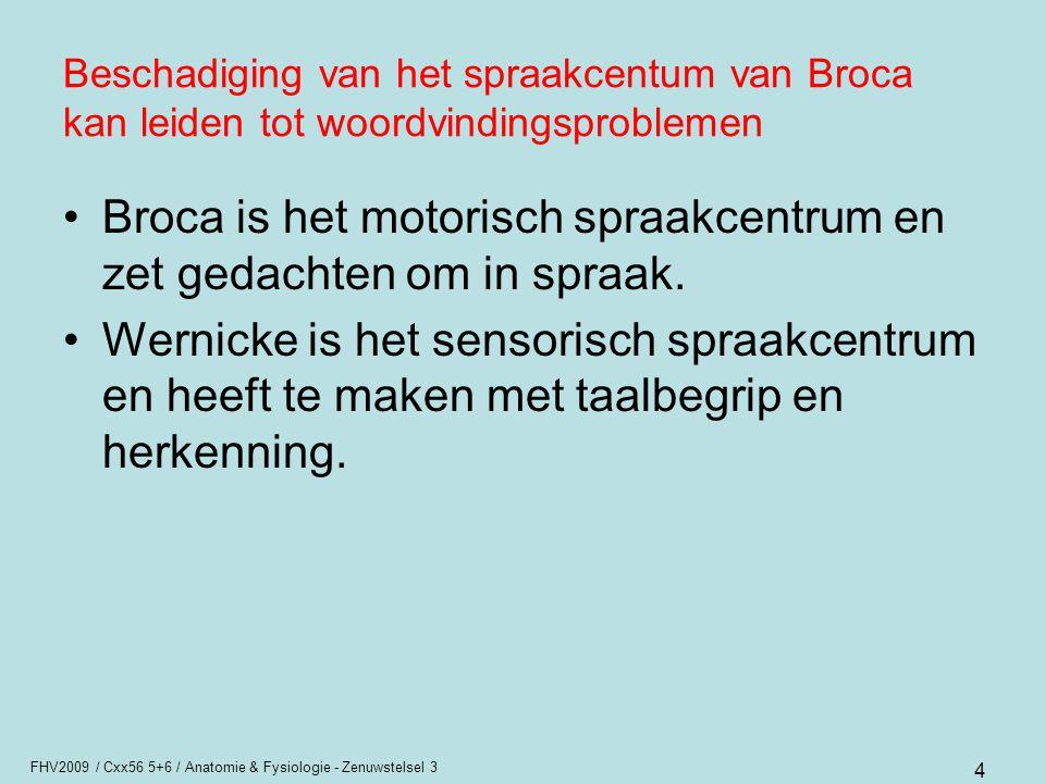 FHV2009 / Cxx56 5+6 / Anatomie & Fysiologie - Zenuwstelsel 3 4 Beschadiging van het spraakcentum van Broca kan leiden tot woordvindingsproblemen Broca
