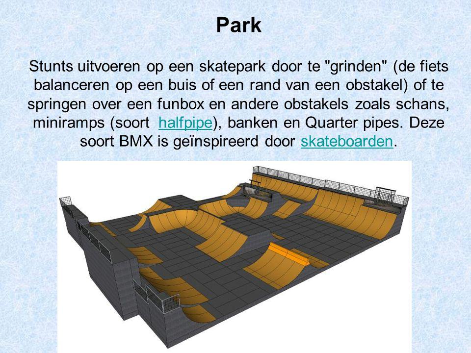 Park Stunts uitvoeren op een skatepark door te