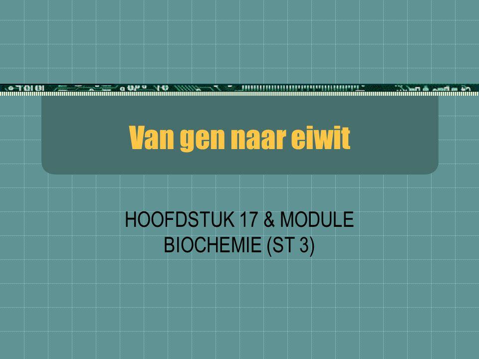Van gen naar eiwit HOOFDSTUK 17 & MODULE BIOCHEMIE (ST 3)