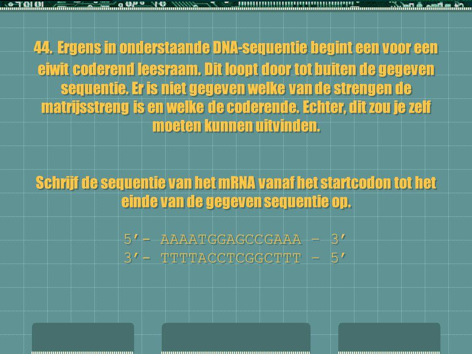 44. Ergens in onderstaande DNA-sequentie begint een voor een eiwit coderend leesraam. Dit loopt door tot buiten de gegeven sequentie. Er is niet gegev