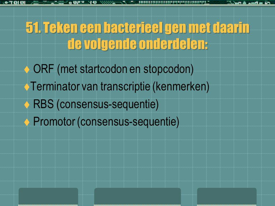 51. Teken een bacterieel gen met daarin de volgende onderdelen:  ORF (met startcodon en stopcodon)  Terminator van transcriptie (kenmerken)  RBS (c