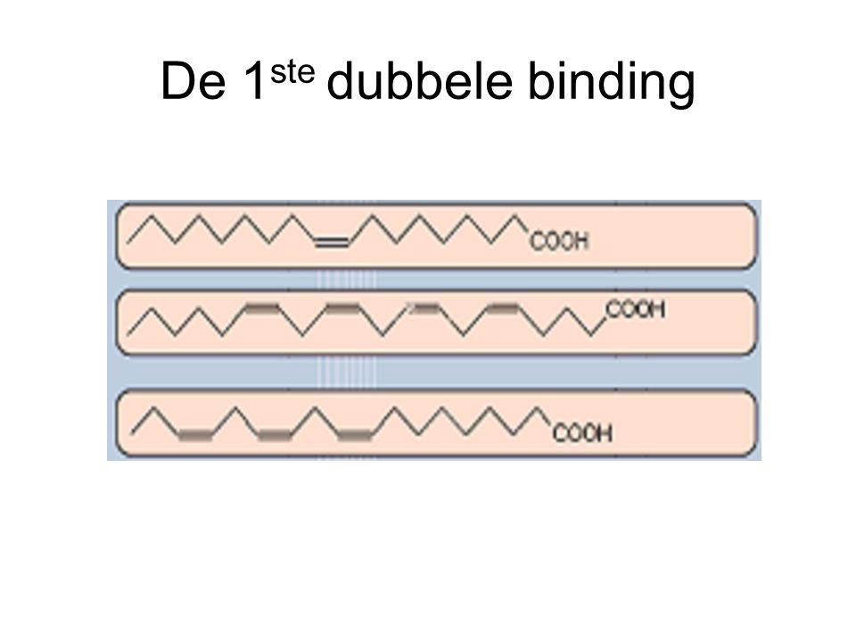 De 1 ste dubbele binding