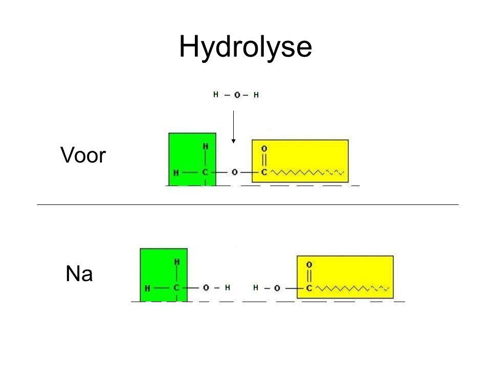 Hydrolyse Voor Na