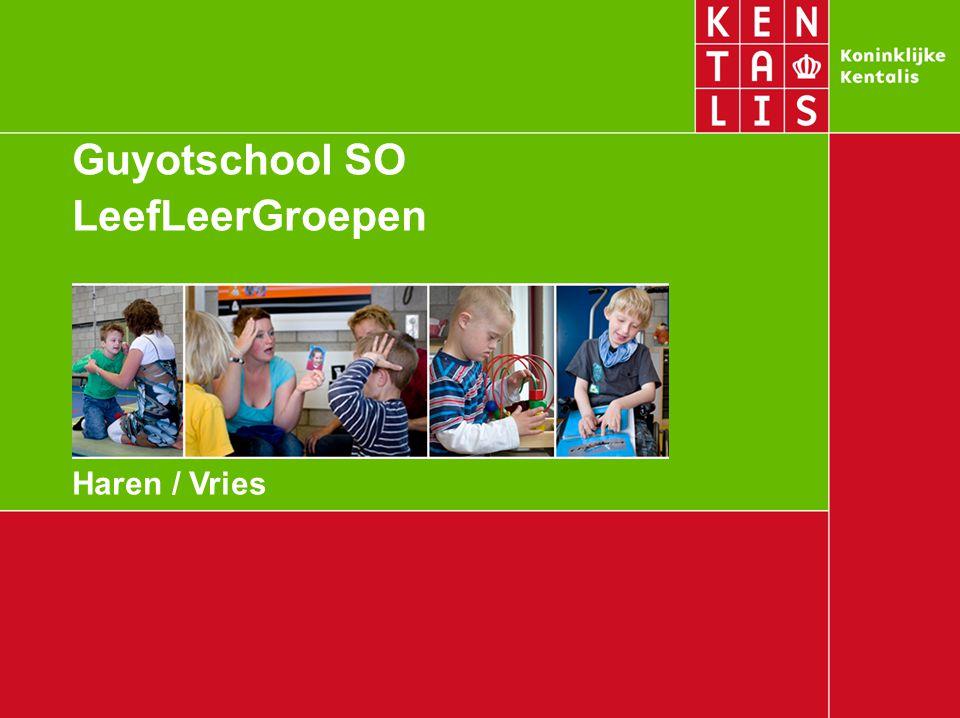 Guyotschool SO LeefLeerGroepen Haren / Vries