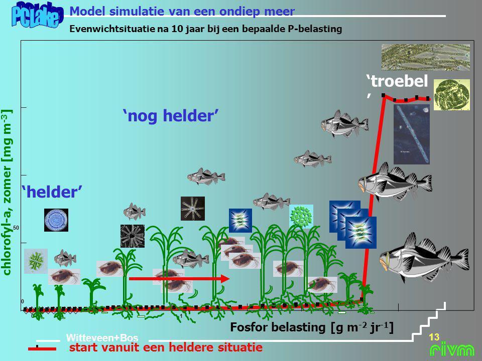 Witteveen+Bos 13 Fosfor belasting [g m -2 jr -1 ] chlorofyl-a, zomer [mg m -3 ] start vanuit een heldere situatie 50 01 0 'helder' 'nog helder' Model