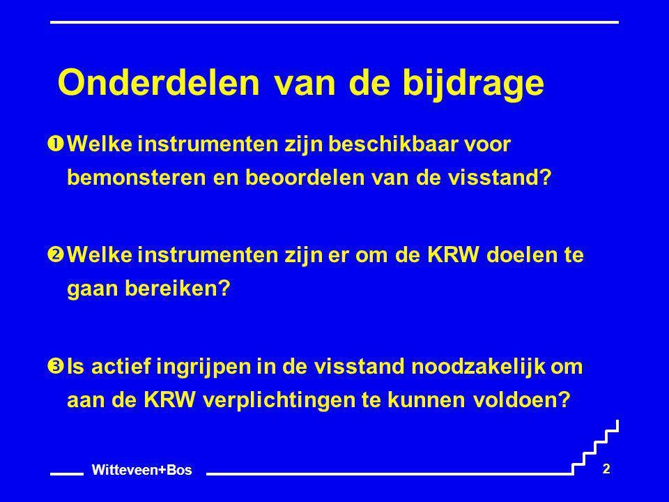 Witteveen+Bos 2 Onderdelen van de bijdrage  Welke instrumenten zijn beschikbaar voor bemonsteren en beoordelen van de visstand?  Welke instrumenten